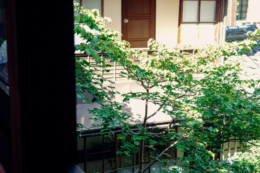 blog-ya3